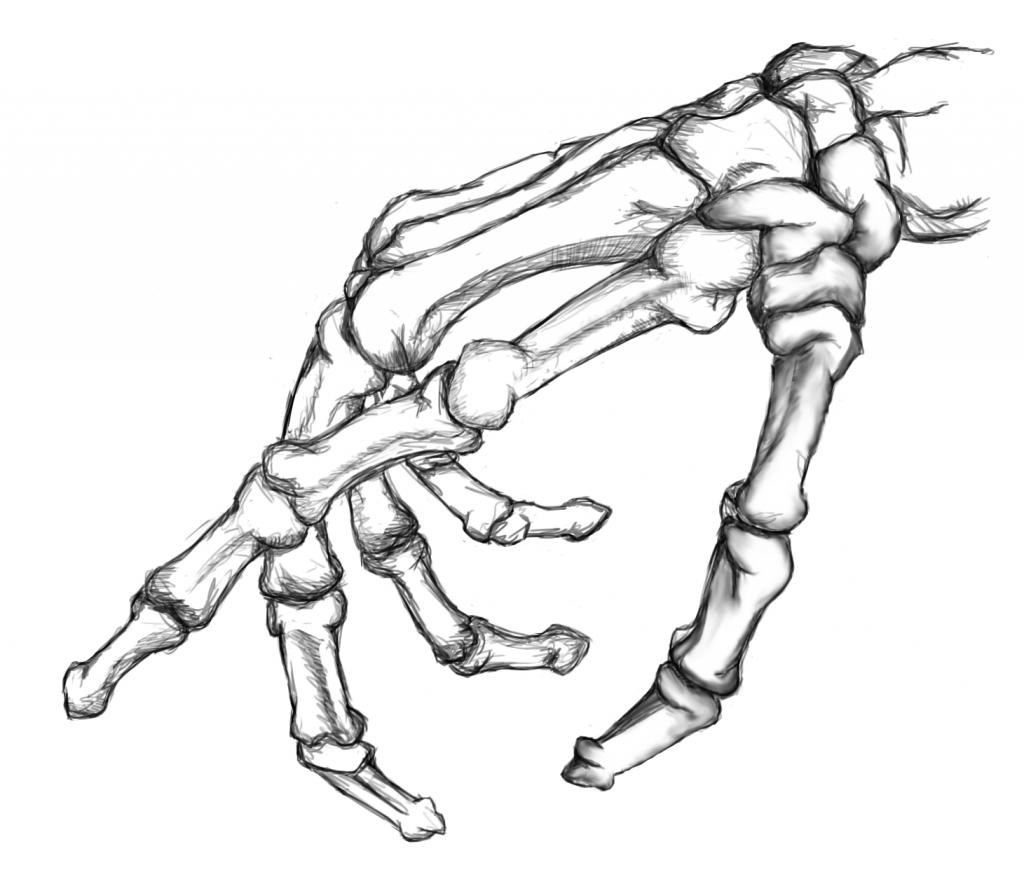 Drawn sleleton hand drawn Flow Tattoo Skeleton Drawing On