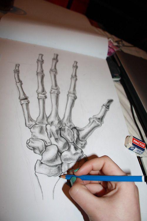 Drawn skeleton hand drawn Drawing Skeleton Hands images 15