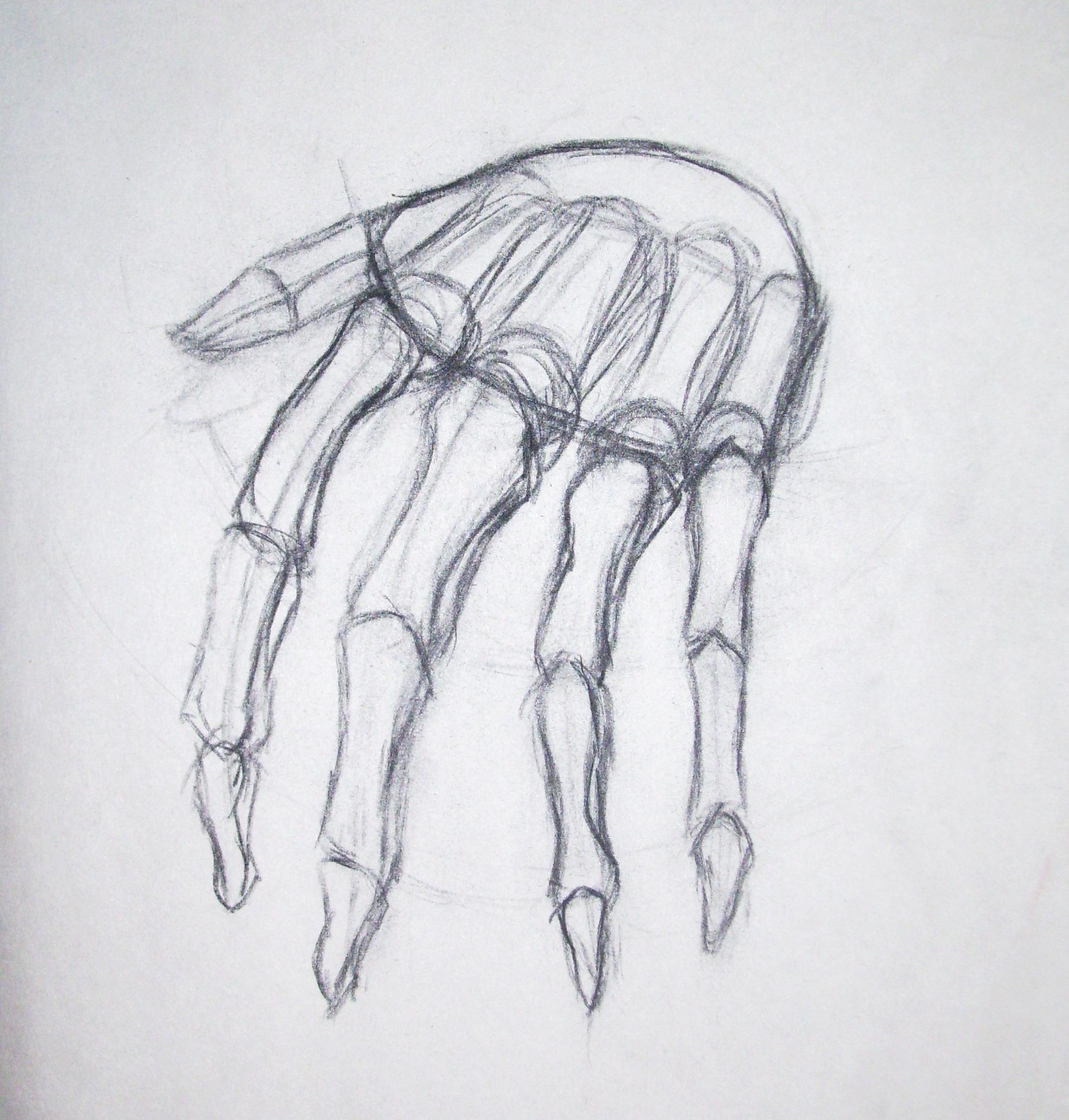 Drawn sleleton hand drawn Drawing: Skeleton Simple Hand Simple