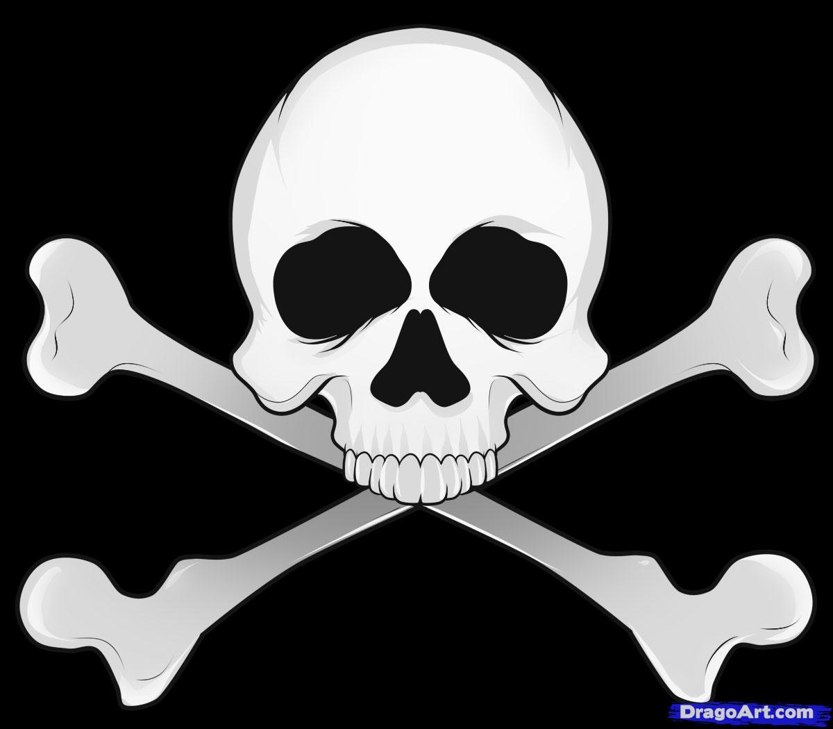 Drawn sleleton head bone To draw FREE to Skulls