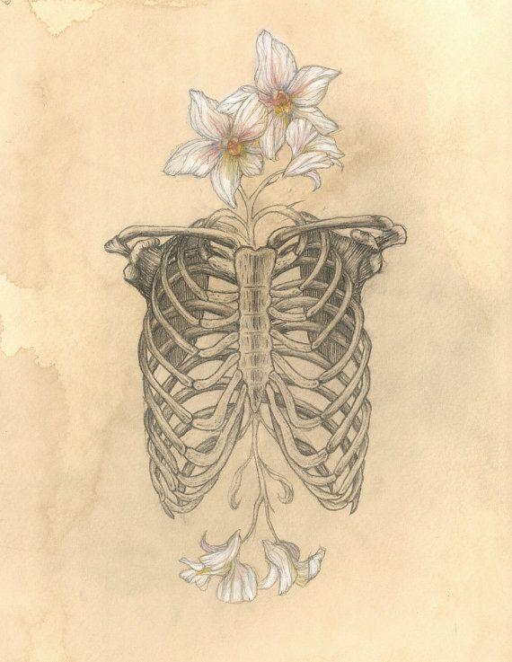 Drawn sleleton heart tumblr Tattoos/Art on images best art