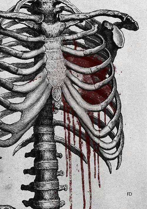 Drawn sleleton heart tumblr Search drawings  horror tumblr