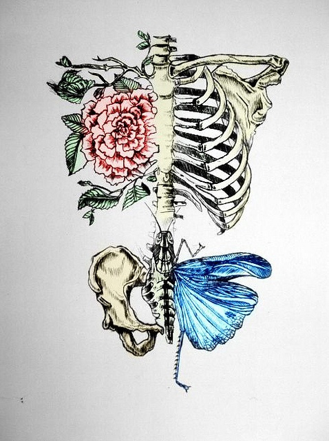 Drawn sleleton heart tumblr On Death butterfly art