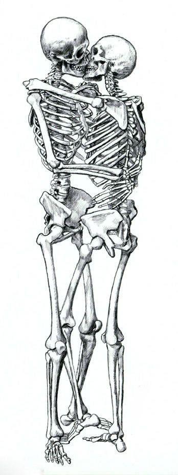 Drawn sleleton love Of 25+ love is on