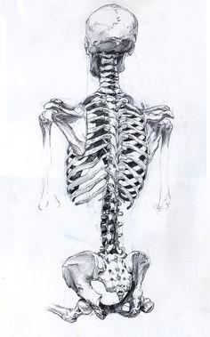 Drawn sleleton neck  Head drawninblack Dead Drawing