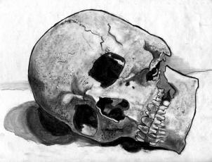 Drawn skeleton realistic Realistic a Human Skull