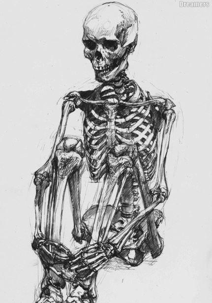 Drawn sleleton sad Skeleton Human 39 poses Pinterest