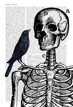 Drawn sleleton sad Skeleton Vintage Skeleton Print Print