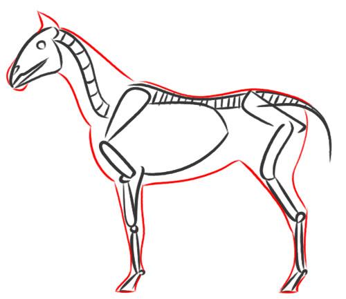 Drawn sleleton simple Tips Pencil horse drawing 5