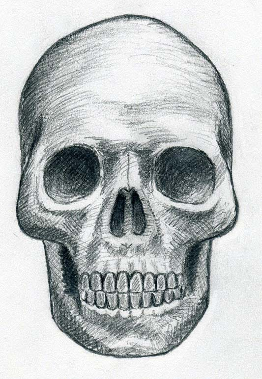 Drawn skeleton skull Be Draw By Can Draw