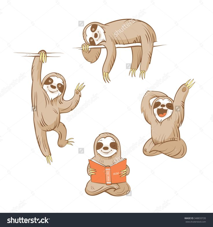 Drawn sloth adorable puppy 25+  More illustration Search