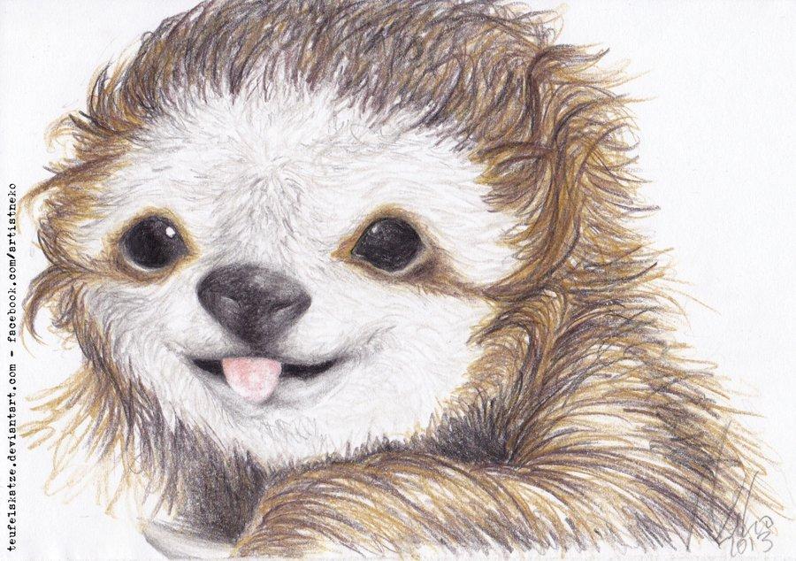 Drawn sloth baby sloth  Baby Baby Sloth Wallpaper