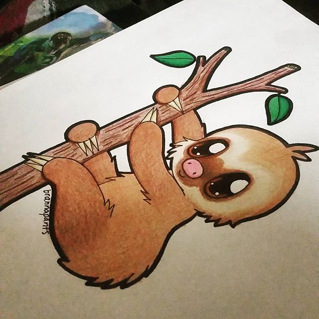 Drawn sloth baby sloth All :) #drawings Instagram #drawing