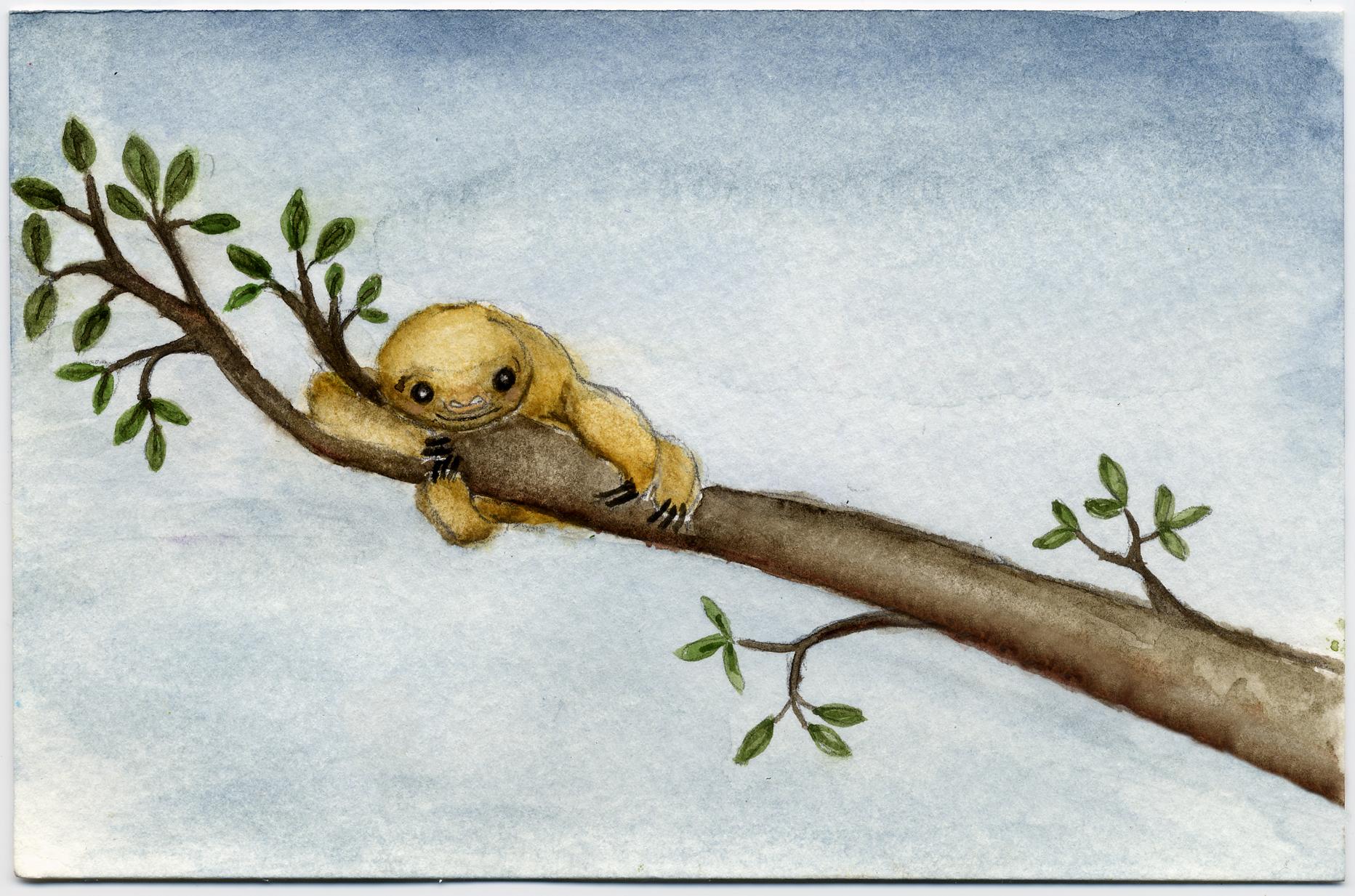 Drawn sloth baby sloth Rock a – Bye of
