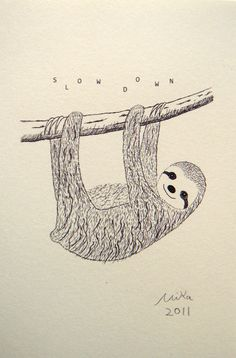Drawn sloth hanging on tree Sloth Sloth Endangered Pinterest Project