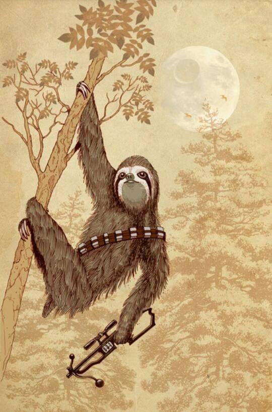 Drawn sloth president Perezoso on (Sloth) images Great