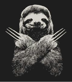 Drawn sloth president Animalia and Pinterest Sloth Slotherine