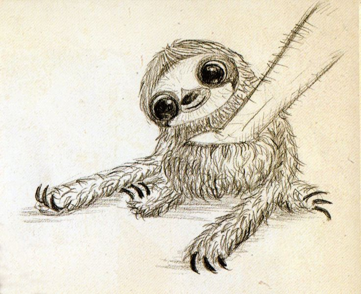Drawn sloth president He on best (Sloth) eventually