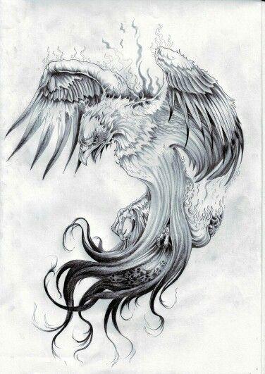 Drawn smoke eagle Pinterest 82 images Phoenix best