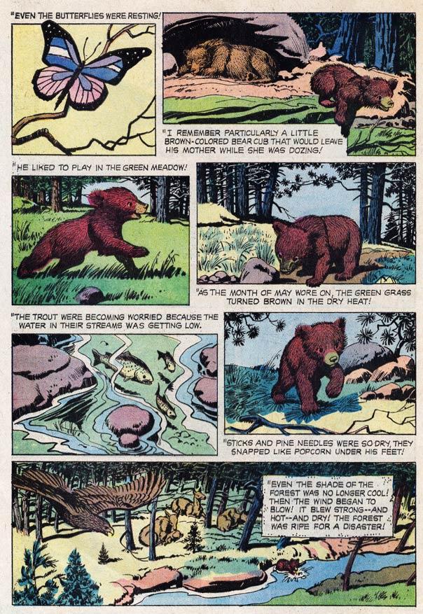 Drawn smokey comic National Falling true incredibly bear