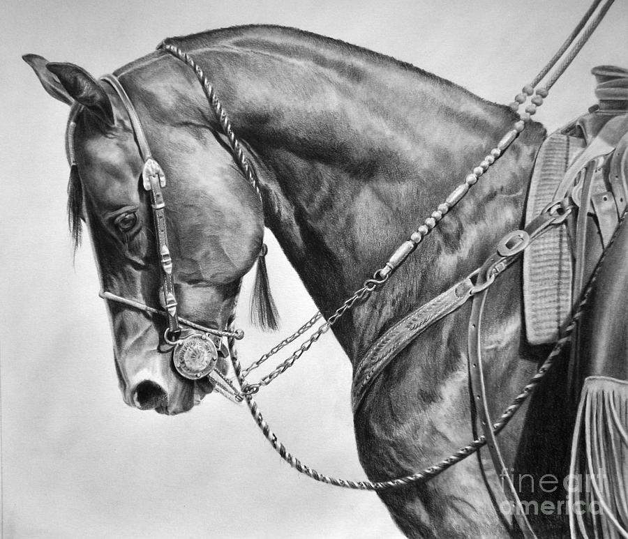 Drawn smokey pencil drawing Pencil ArtPencil Drawings Smokey DrawingsArt