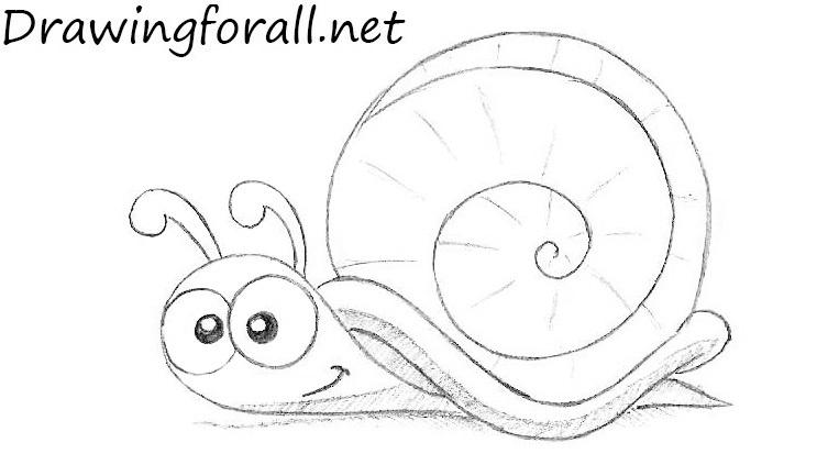 Drawn snail Snail Snail a net DrawingForAll