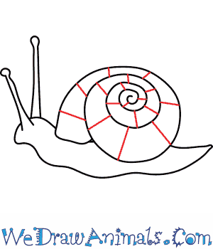 Drawn snail A to Print Draw Tutorial