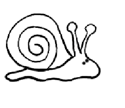 Drawn snail Draw Draw Drawing  Snails