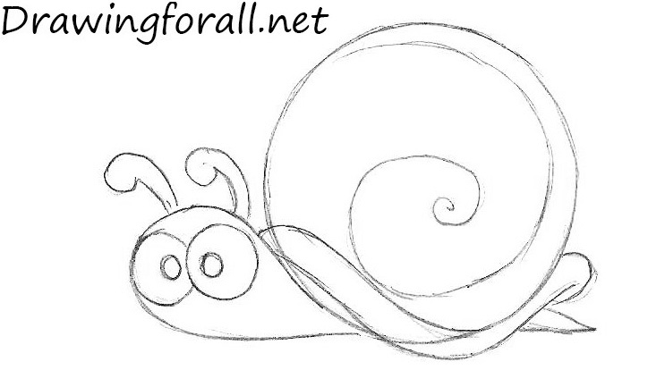 Drawn snail cartoon A DrawingForAll to How Snail