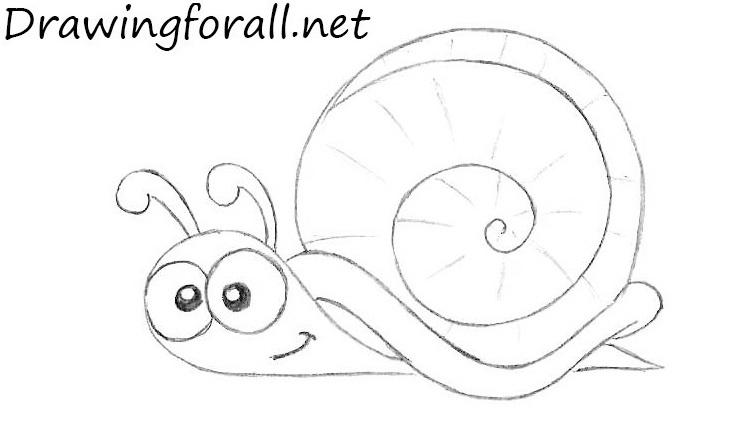 Drawn snail cartoon Step How to How net