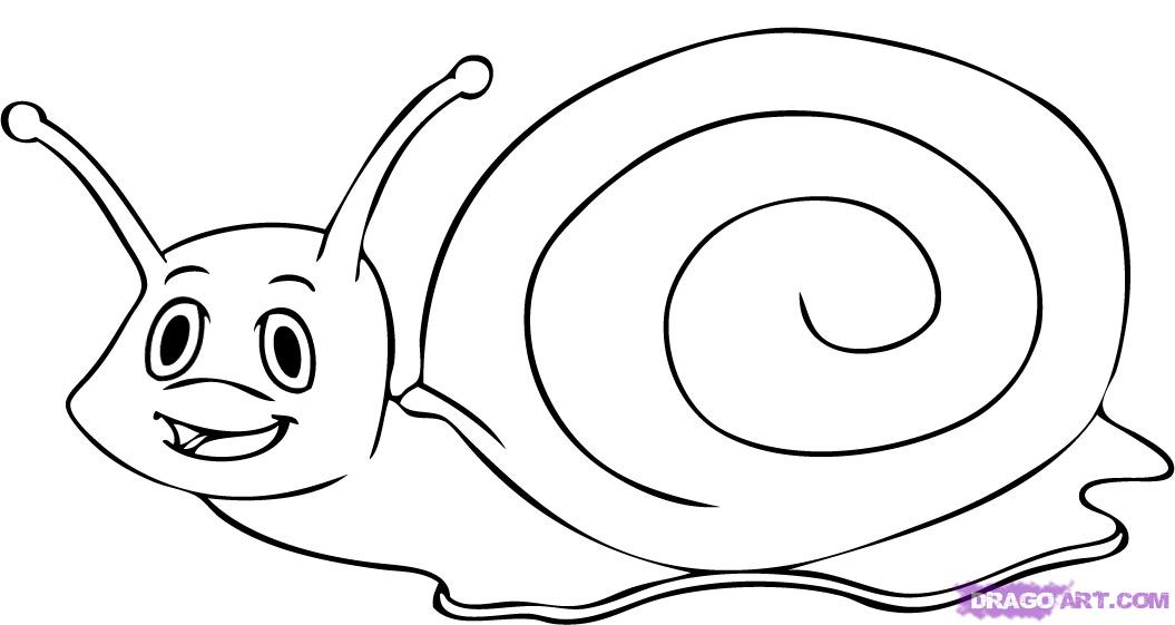 Drawn snail outline Step Cartoon cartoon a to