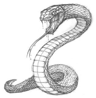 Drawn serpent The 25+ a into turn