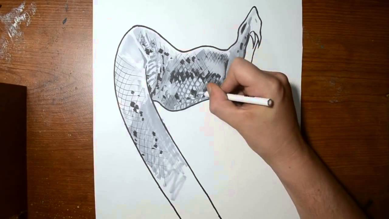 Drawn snake hand drawn Rattlesnake Anamorphic Cool Drawing to