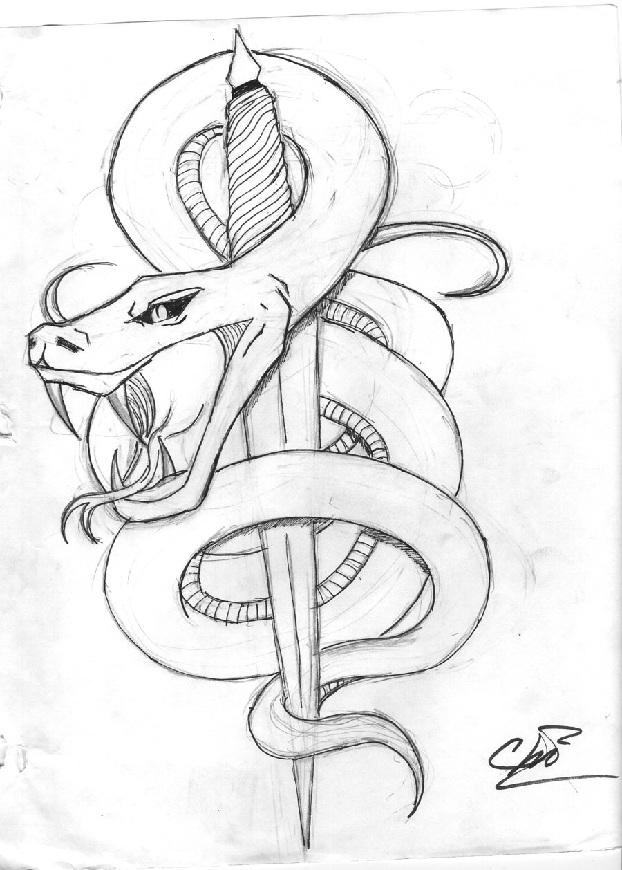 Drawn snake angry snake Tattoo images Tribal  Angry