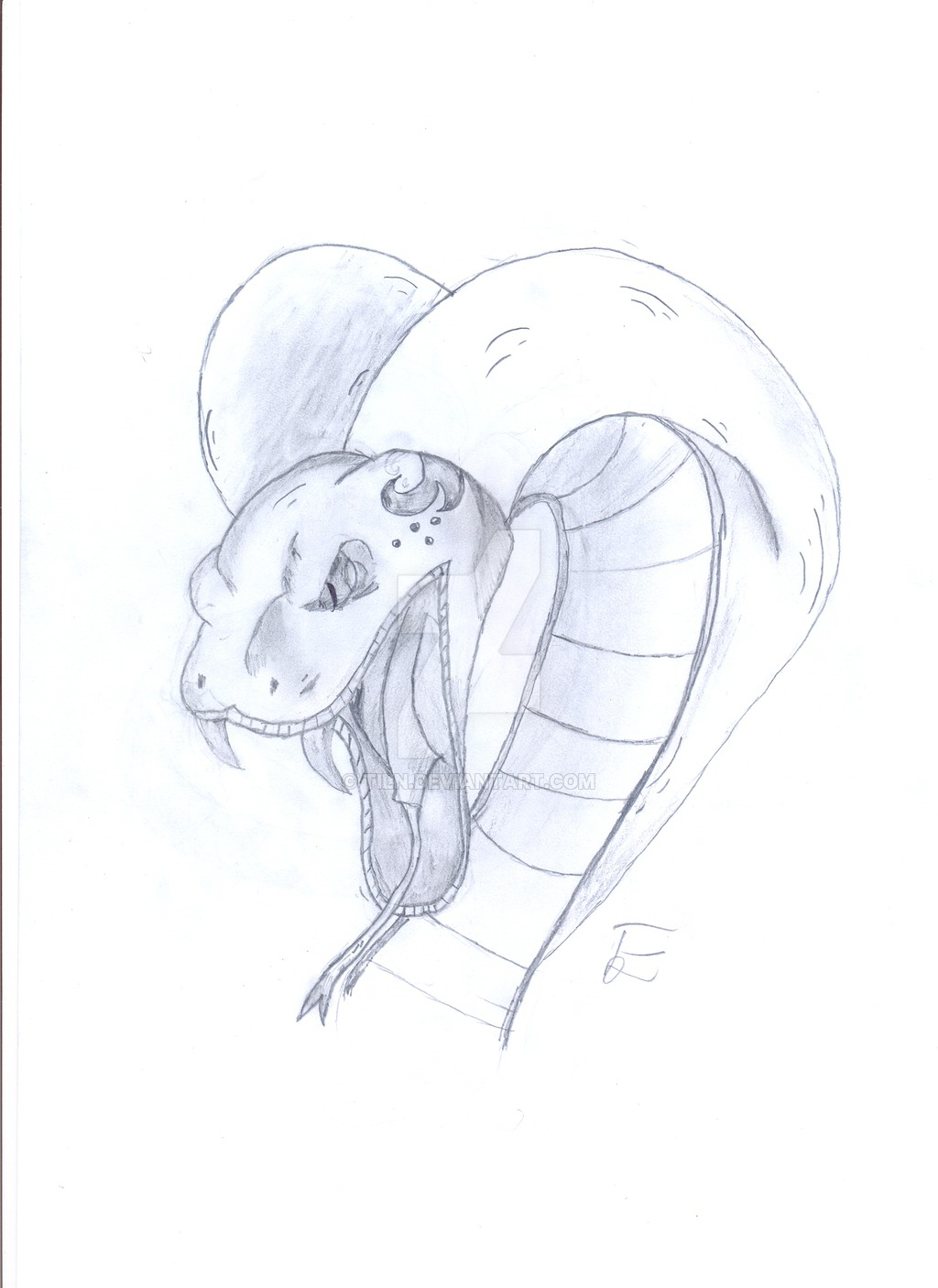 Drawn snake angry snake Cobra cobra Angry by by