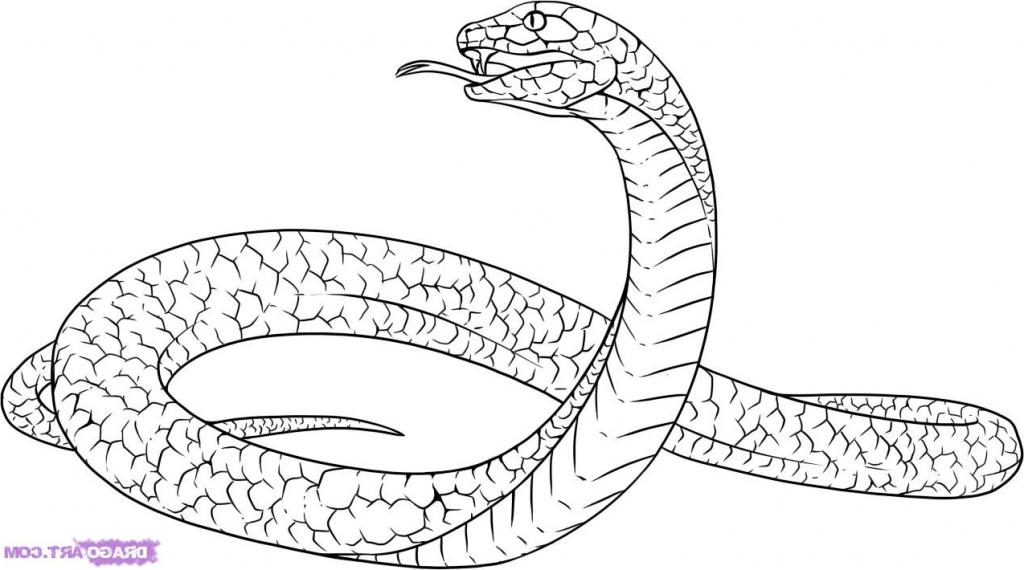 Black Mamba clipart step by step Simple Snake Step Free Art
