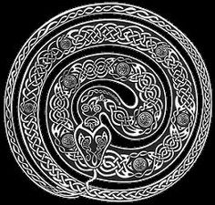 Drawn snake celtic knot Celtic to want this we