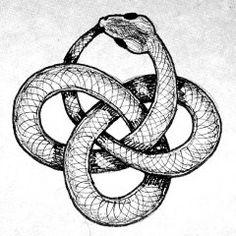 Drawn snake celtic knot Snake via Pinterest tattoo Flickr