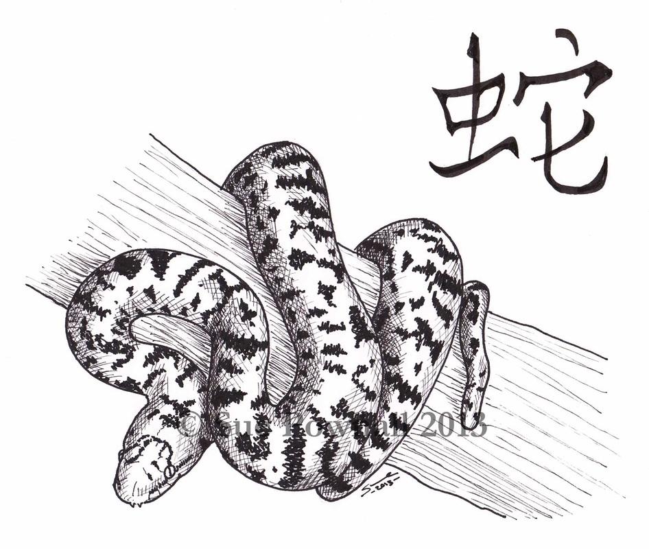 Drawn snake chinese snake Pownall: of illustrator Sue year