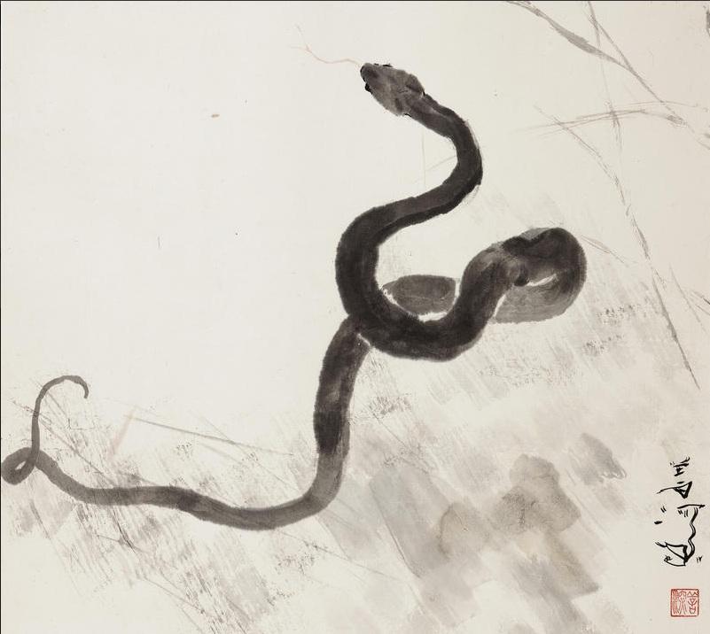 Drawn snake chinese snake The Snake on (Yang Snake