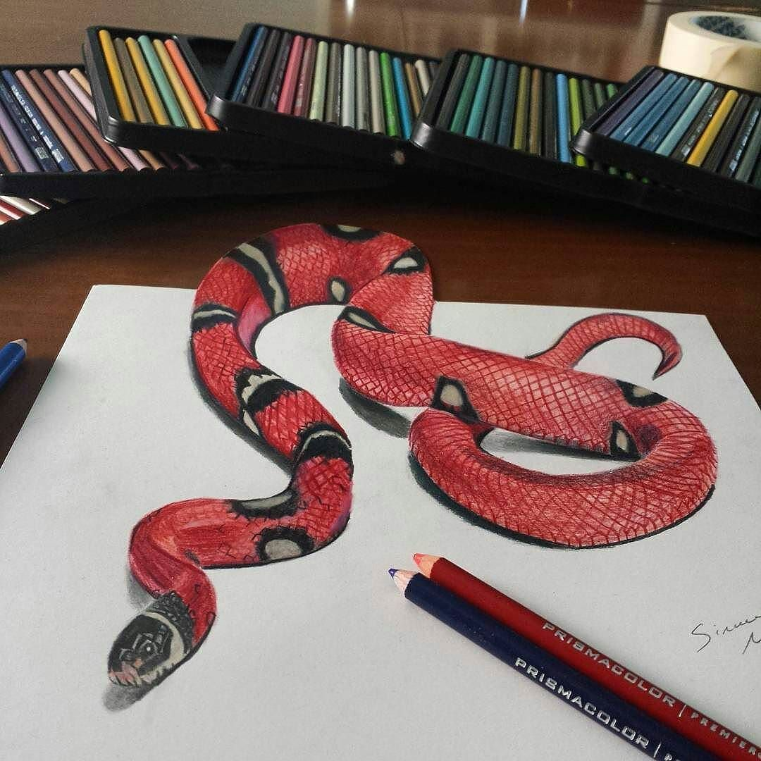 Drawn snake coral snake If 3D you Share Snake