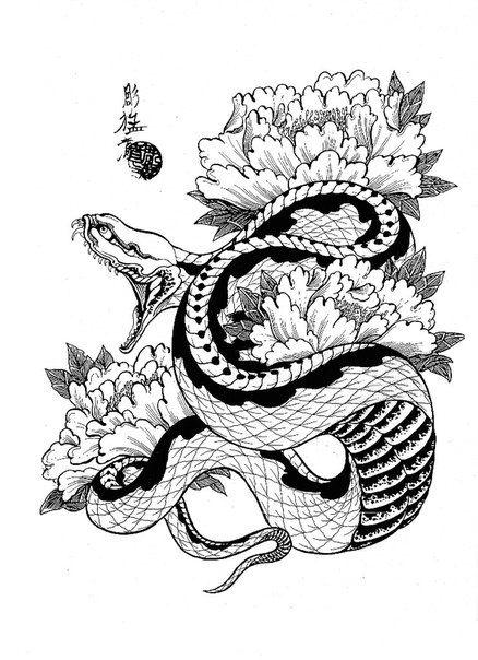 Drawn snake dragon Tattoo Jack Pinterest skulls 103