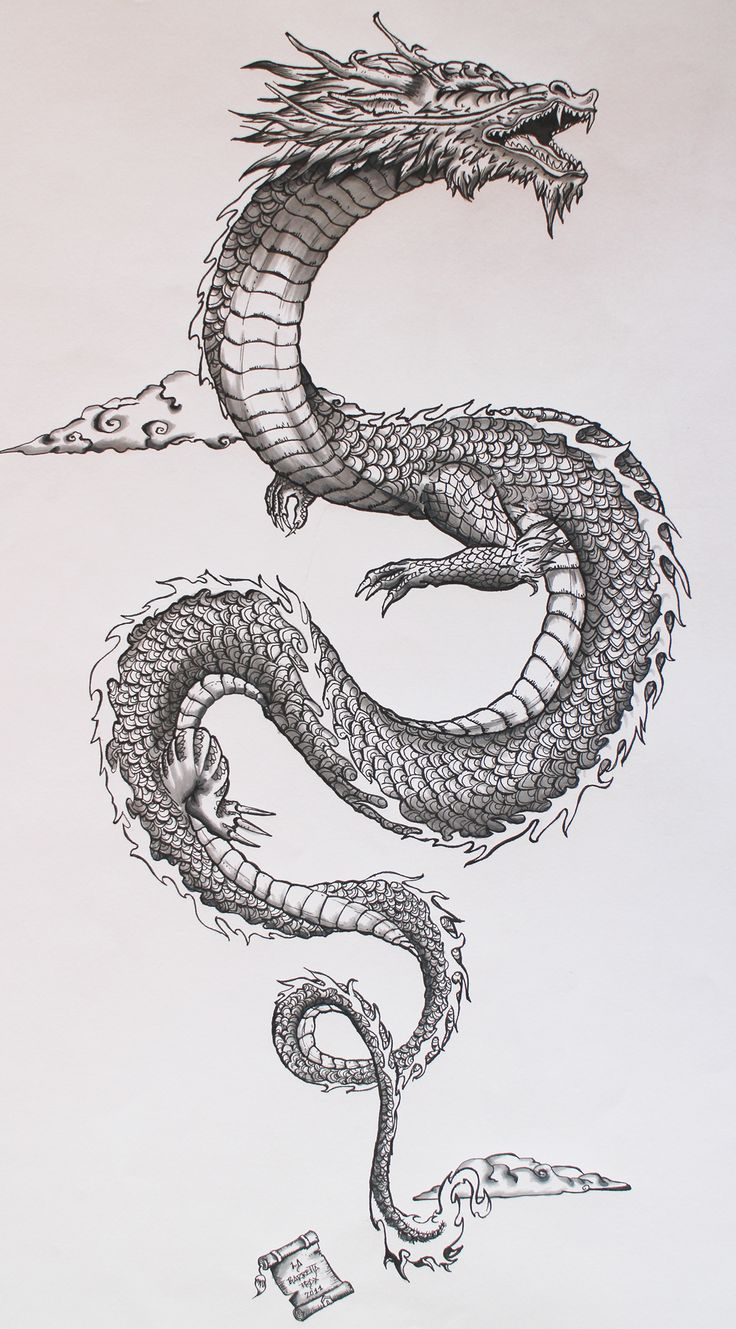 Drawn chinese dragon awesome On dragon Ancient Pinterest on