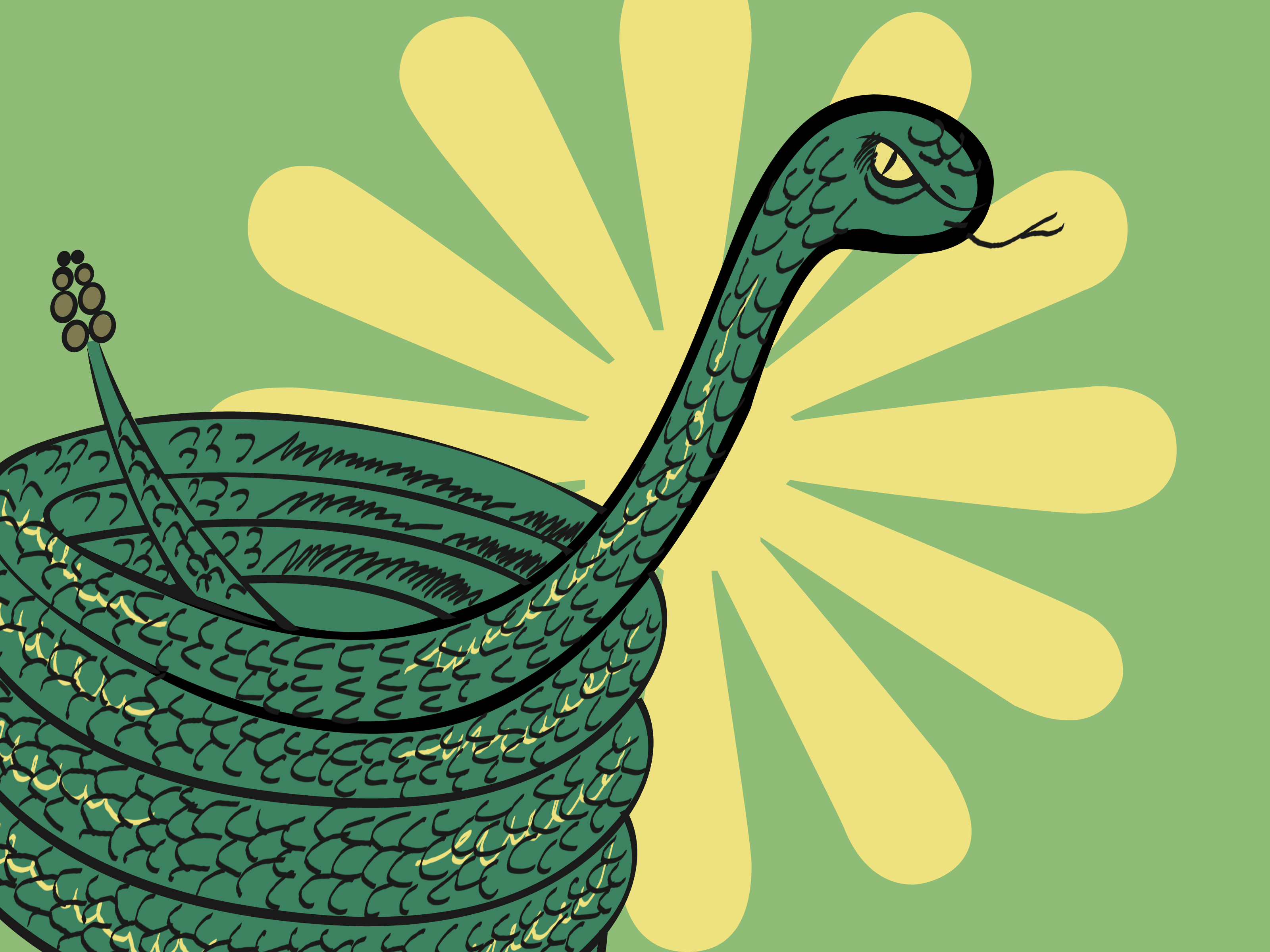 Drawn snake green A to Steps Coiled Draw