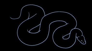 Drawn snake python snake 7 How Easy How Step