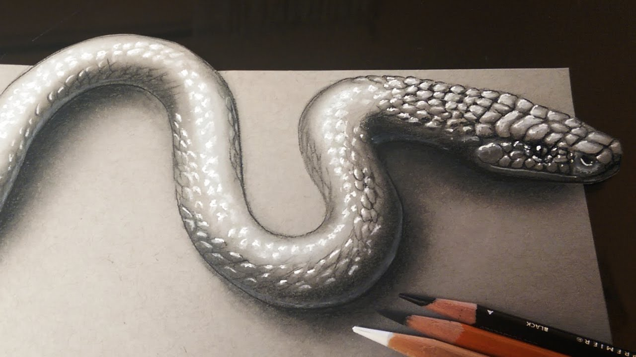 Drawn snake realistic Realistic 3D  How Snake