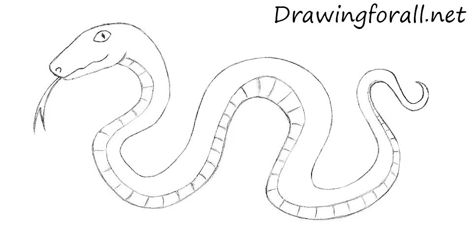 Drawn snake simple How Snake Kids Lion Cartoon