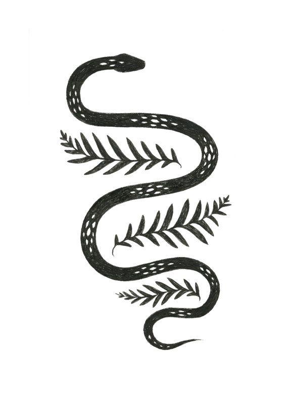 Drawn snake small snake Fern pen of 5x7 tattoo