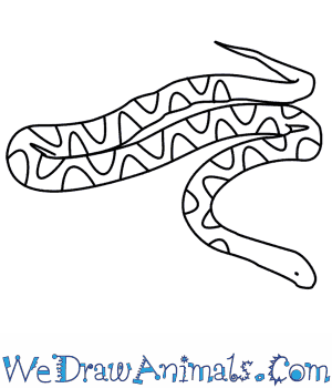 Drawn snake small snake To Snake How  Draw