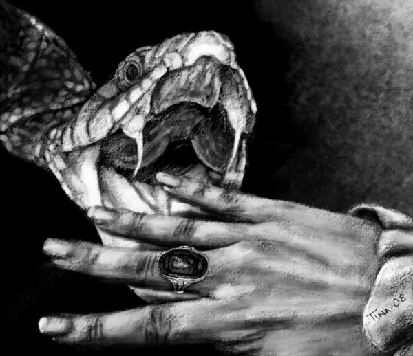 Drawn snake snake attack Asynja by Snake by Attack